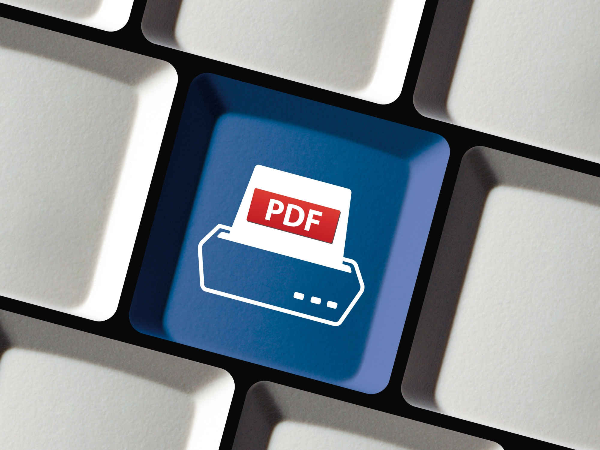 PDF printer icon on button