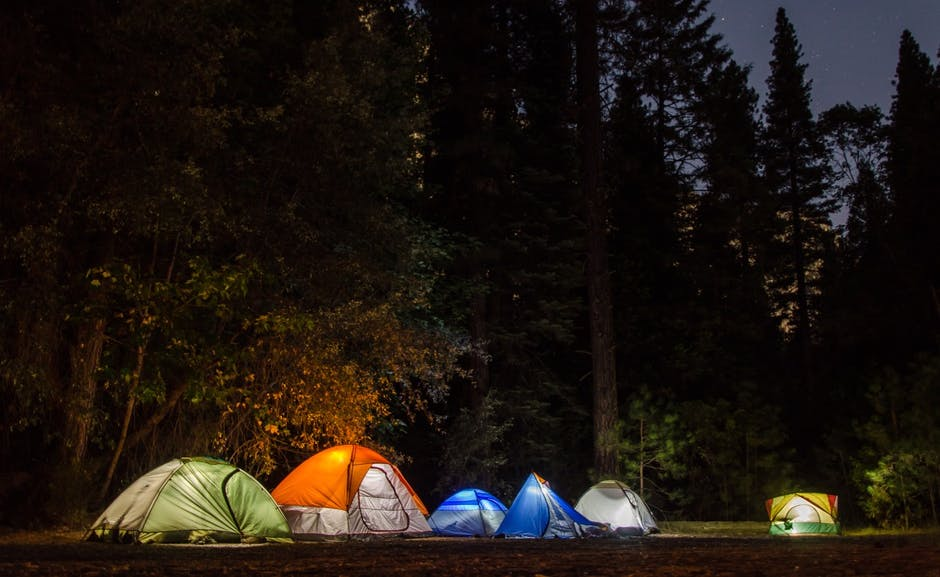 Camping Tents in the Forest